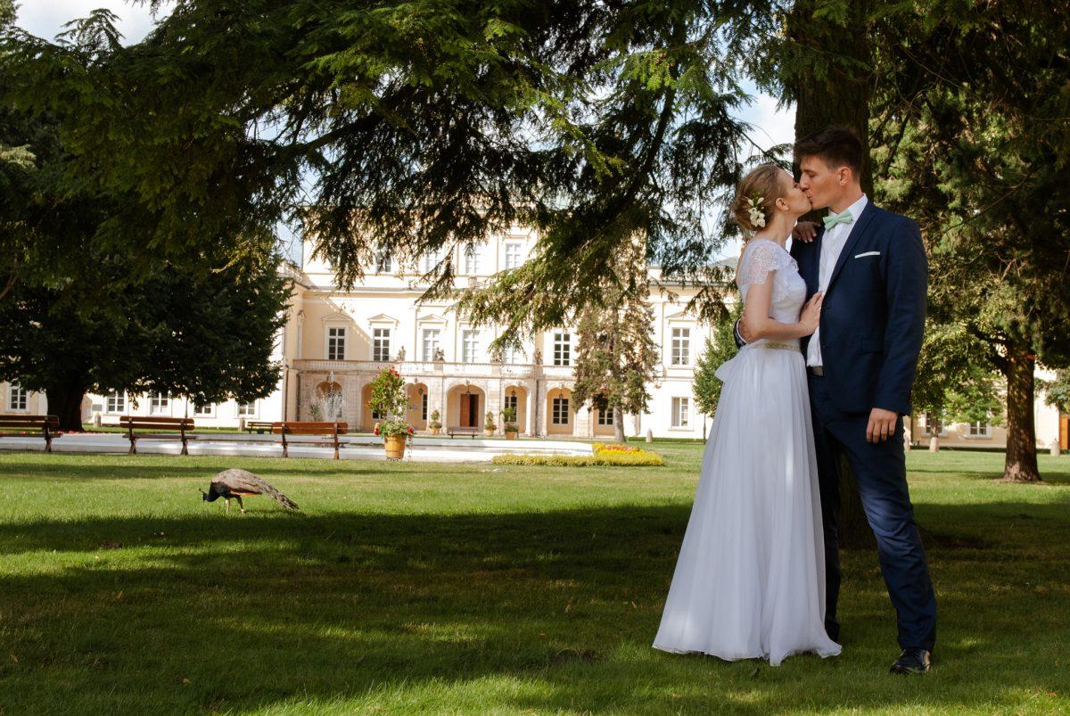 Sesja wparku Czartoryskich | Fotografia ślubna Puławy